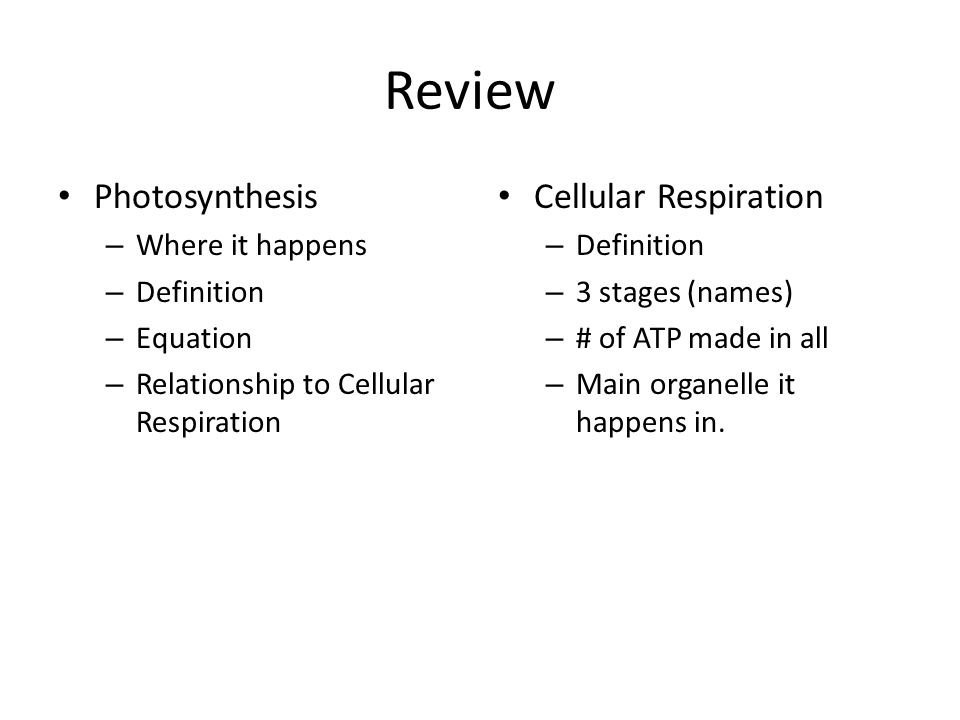 equation for cellular respiration and photosynthesis relationship