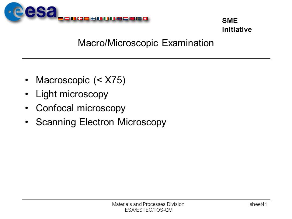 Macro/Microscopic Examination