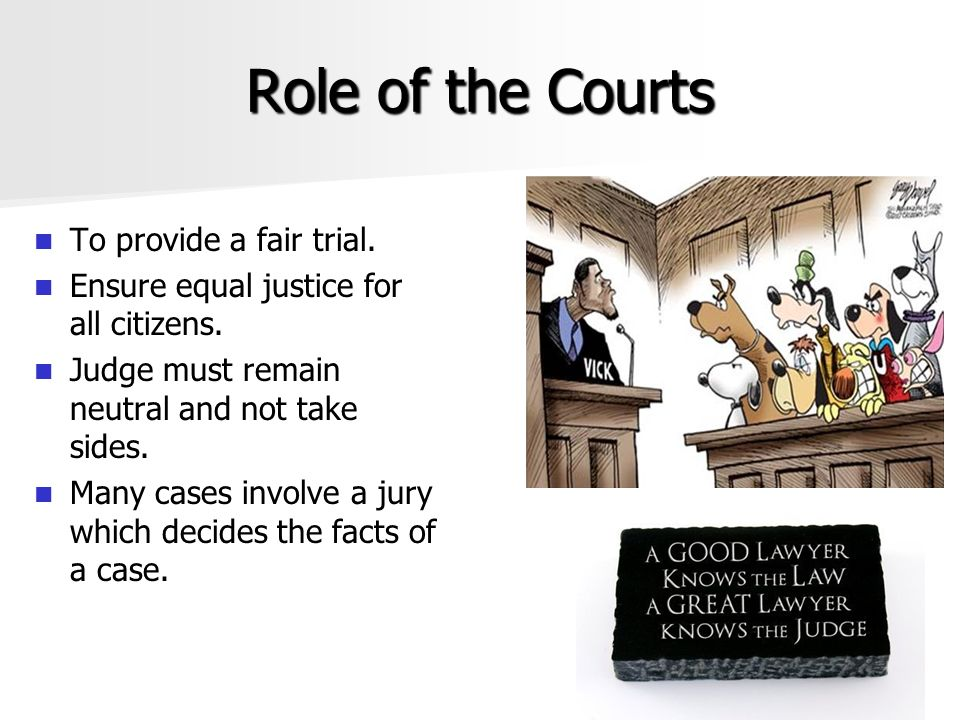 Role of the Courts To provide a fair trial.
