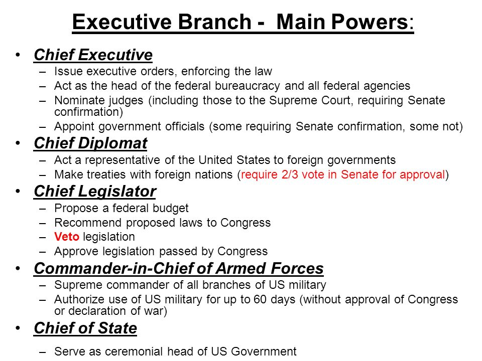 Executive Branch - Main Powers: