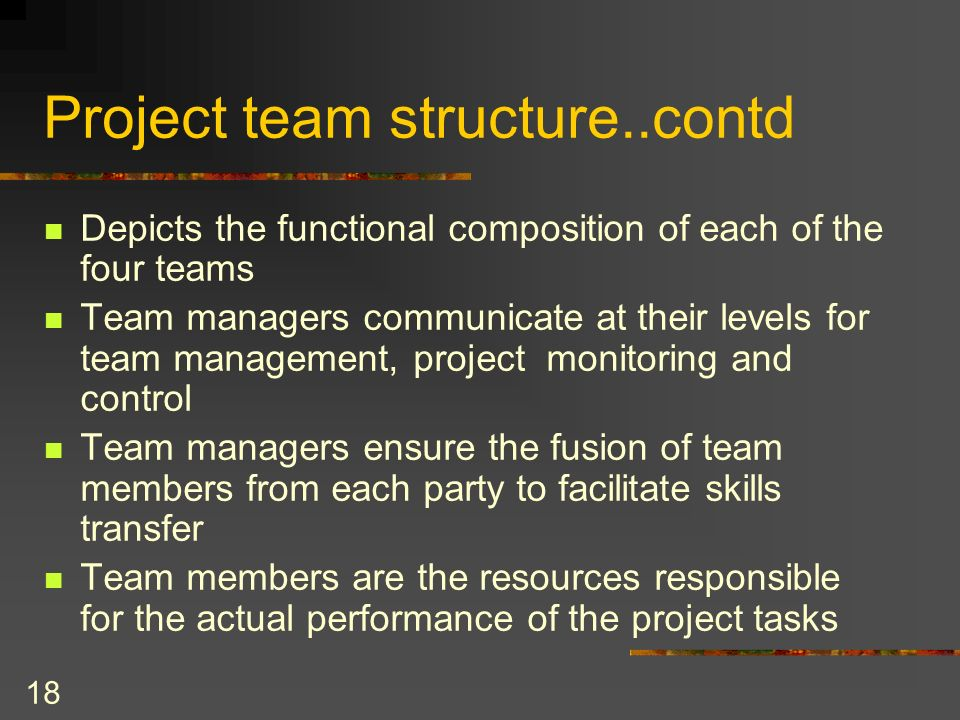 Project team structure..contd