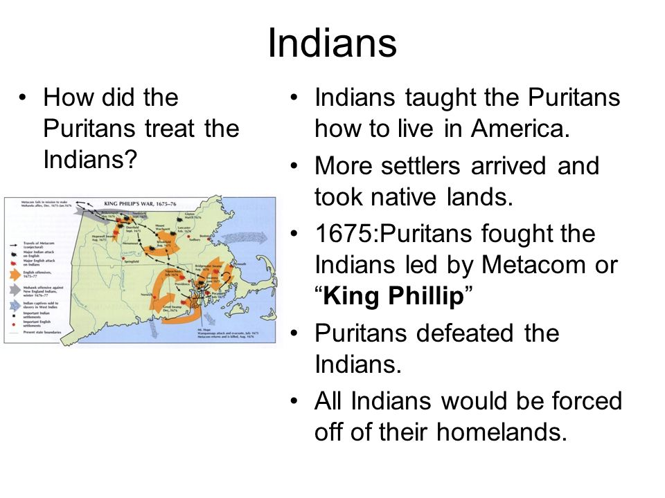 Indians How did the Puritans treat the Indians