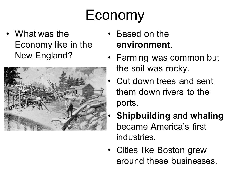 Economy What was the Economy like in the New England