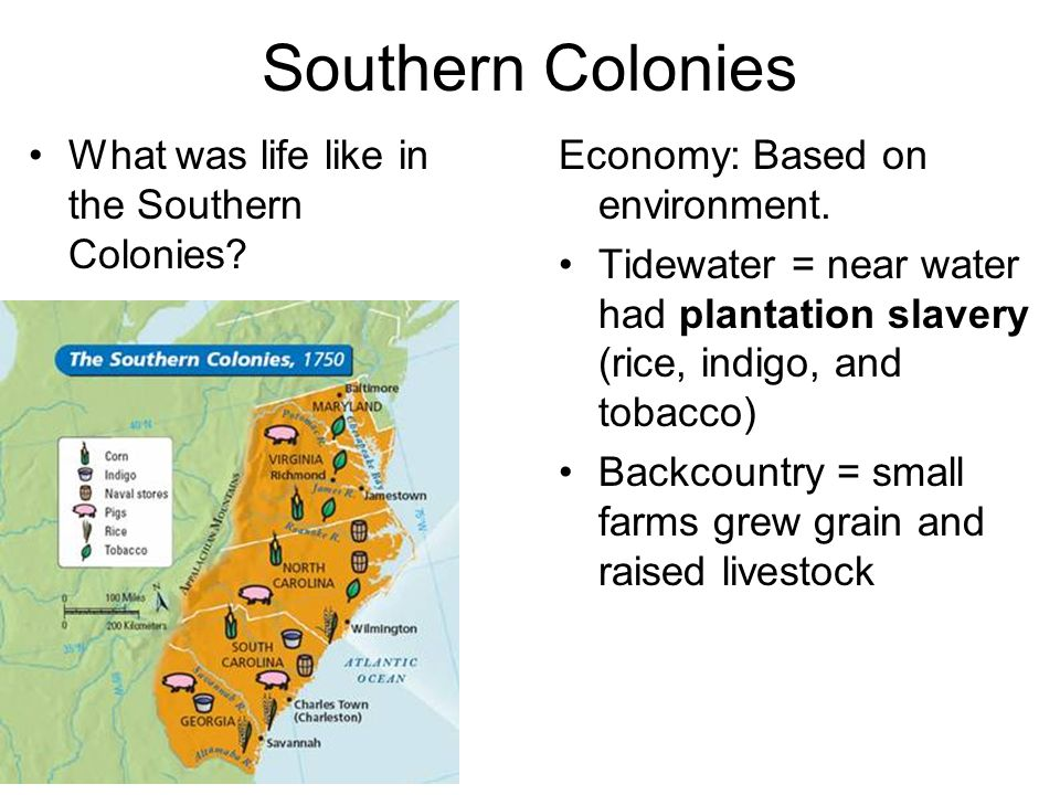 Southern Colonies What was life like in the Southern Colonies