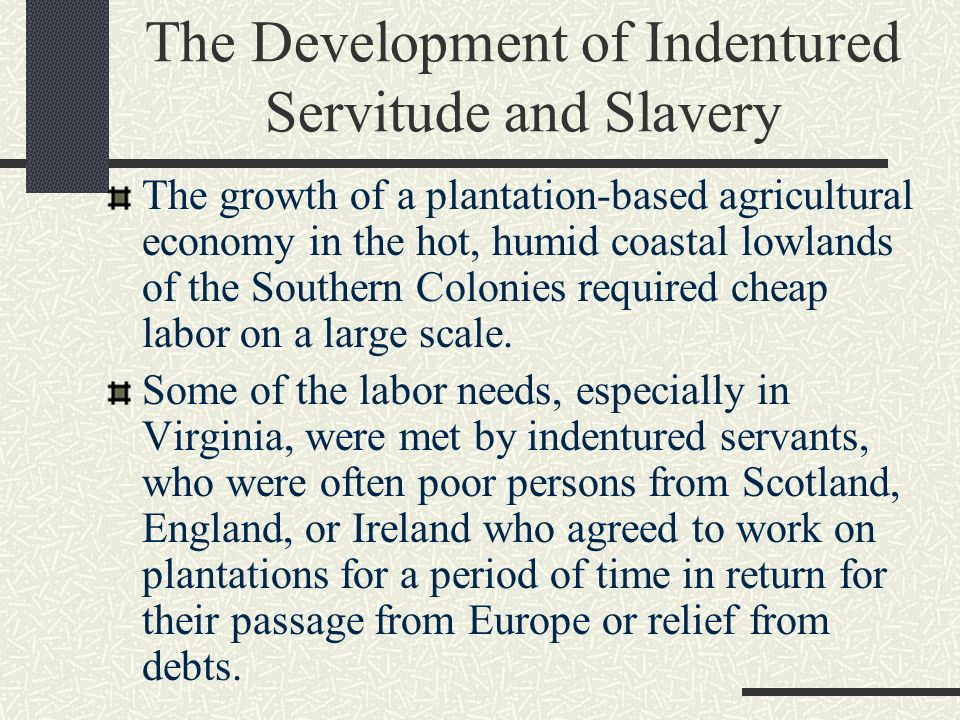 the history of indentured servitude history essay Regardless, indentured servitude continued to be an important institution in the   twelve essays dealing with the sweeping history of servant.