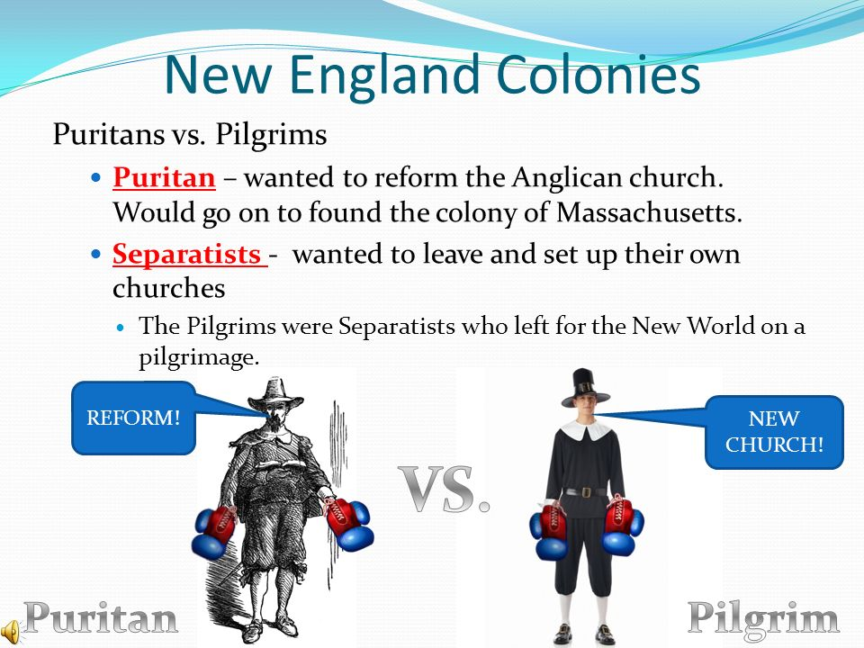 Puritans vs pilgrims essays