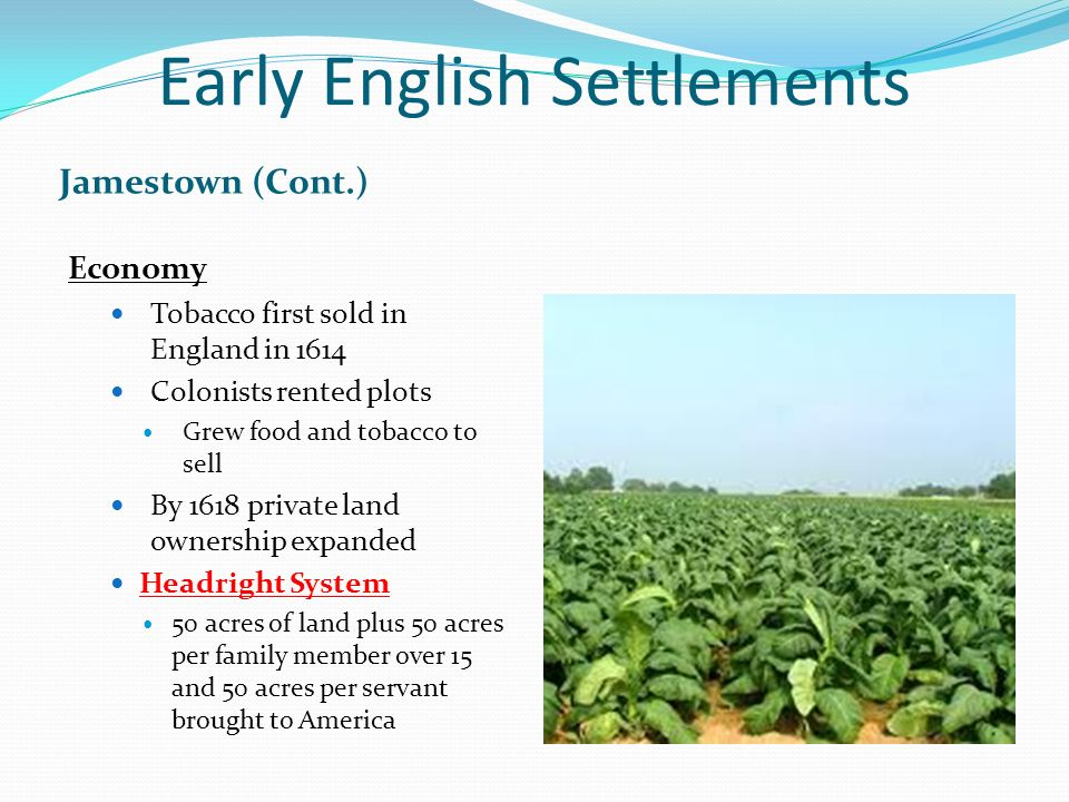 early british america labor systems An immigrant experience in colonial pennsylvania  the british parliament's  ban on indentured servitude in the mid-1600s c  widespread rebellion on the  part of native americans made tobacco farming both dangerous and unprofitable.