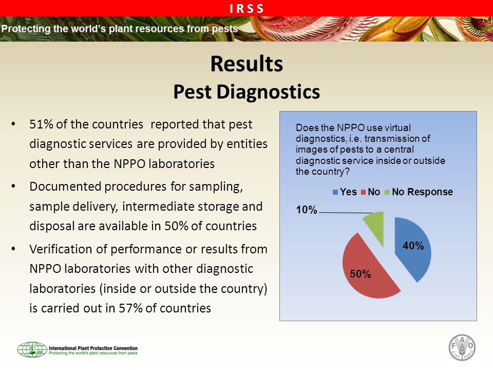 Results Pest Diagnostics