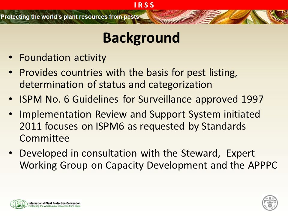 Background Foundation activity