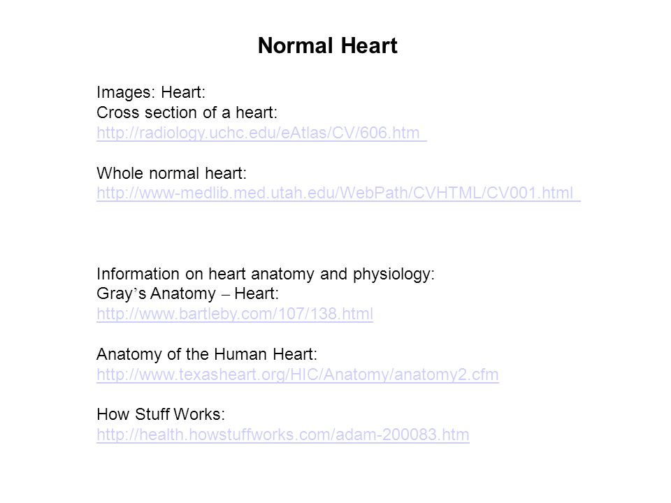 Normal Heart Images: Heart: Cross section of a heart: - ppt video ...