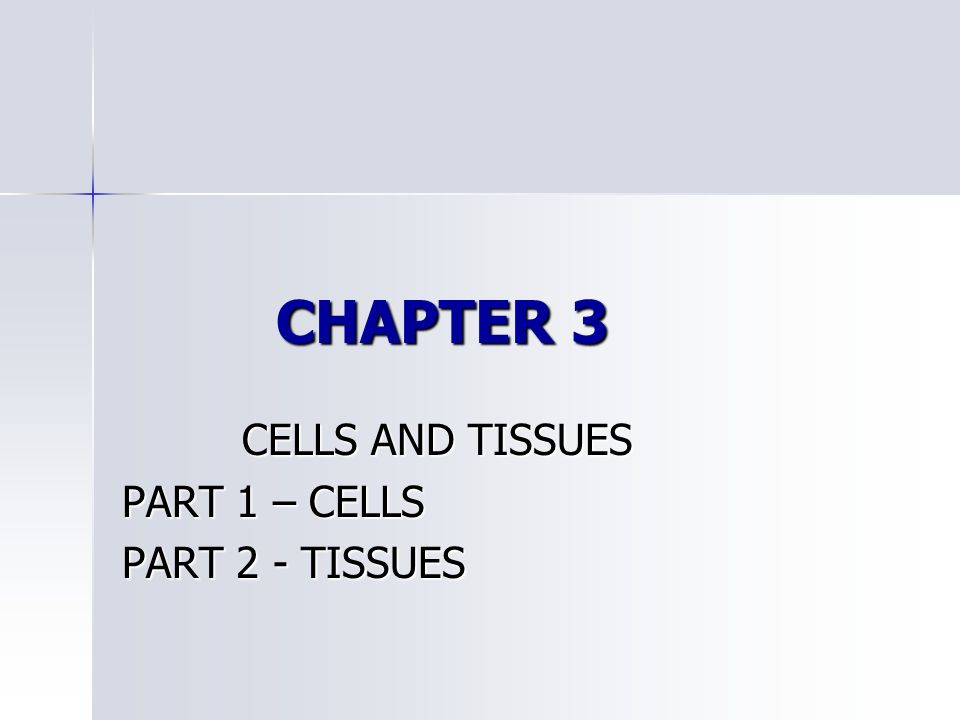 CELLS AND TISSUES PART 1 – CELLS PART 2 - TISSUES - ppt video online ...