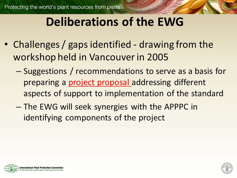 Deliberations of the EWG