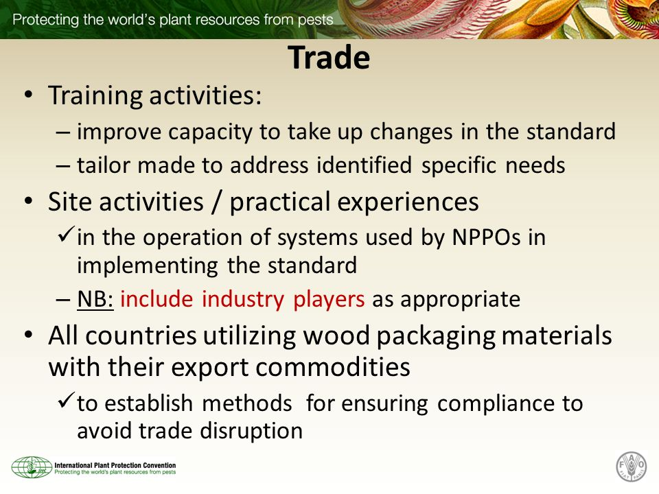 Trade Training activities: Site activities / practical experiences