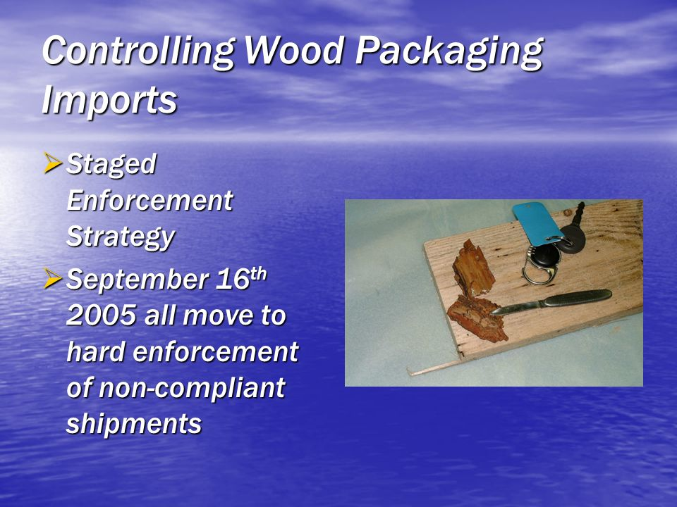 Controlling Wood Packaging Imports