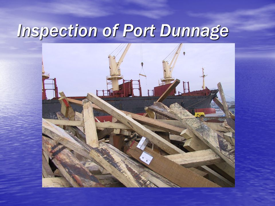 Inspection of Port Dunnage