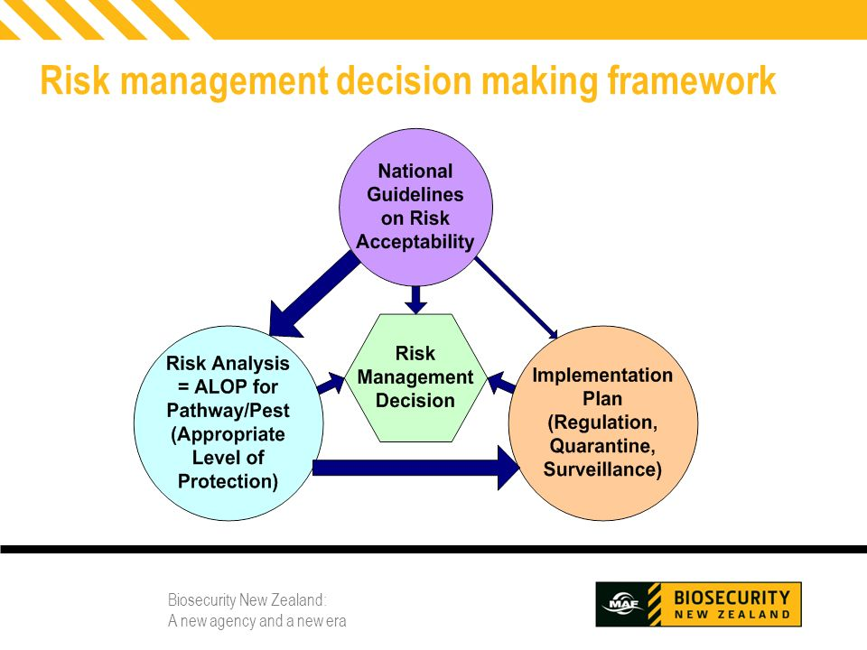 Risk management decision making framework