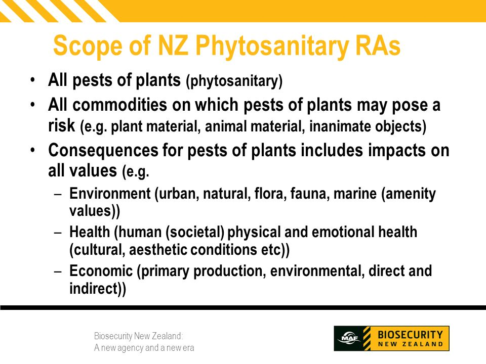 Scope of NZ Phytosanitary RAs
