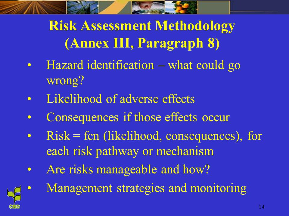 Risk Assessment Methodology (Annex III, Paragraph 8)