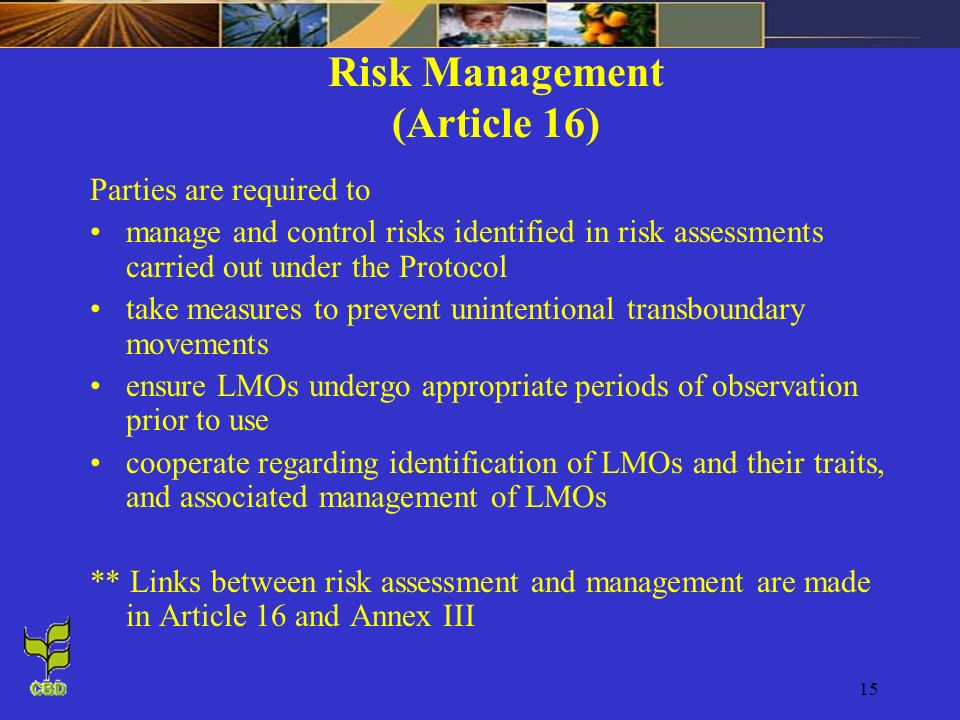Risk Management (Article 16)