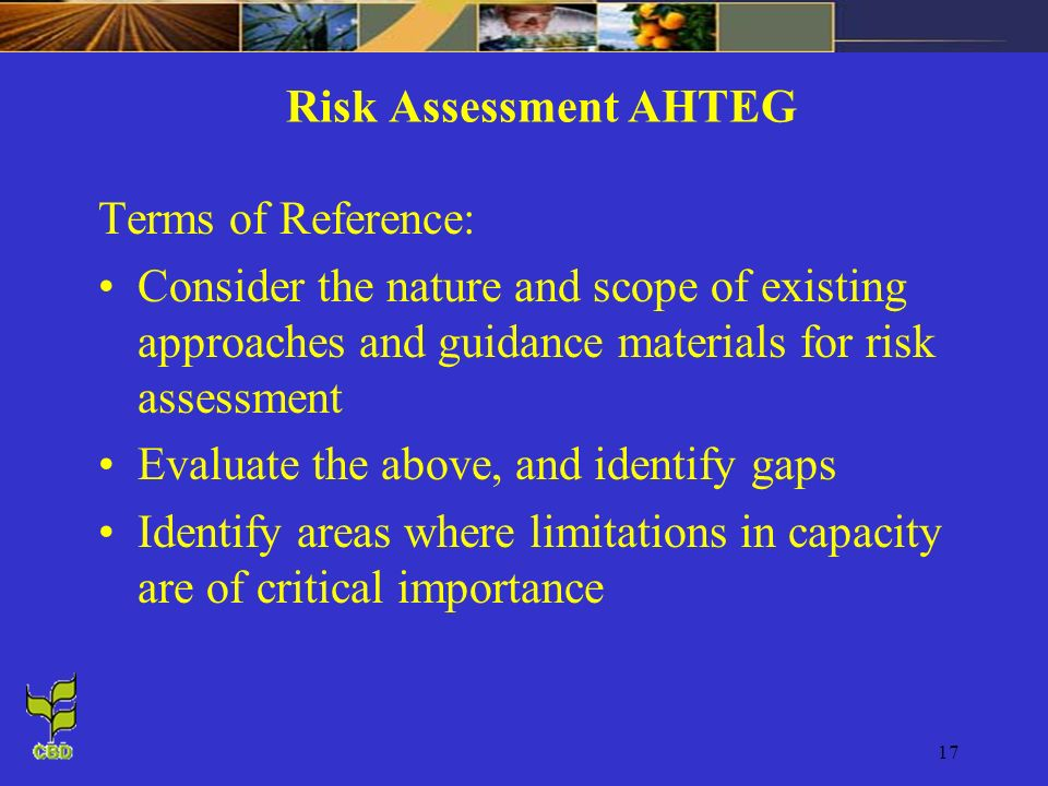 Risk Assessment AHTEG Terms of Reference: Consider the nature and scope of existing approaches and guidance materials for risk assessment.
