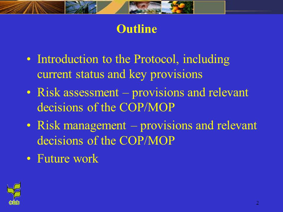 Outline Introduction to the Protocol, including current status and key provisions.