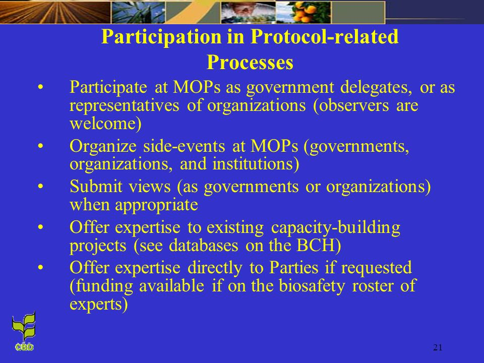 Participation in Protocol-related Processes