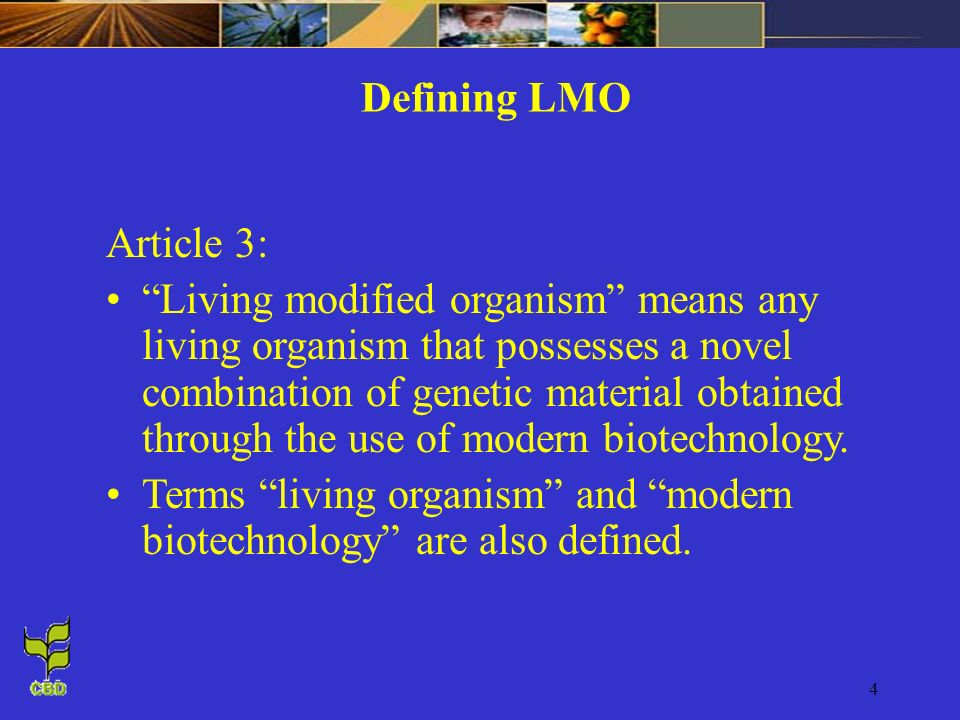 Defining LMO Article 3:
