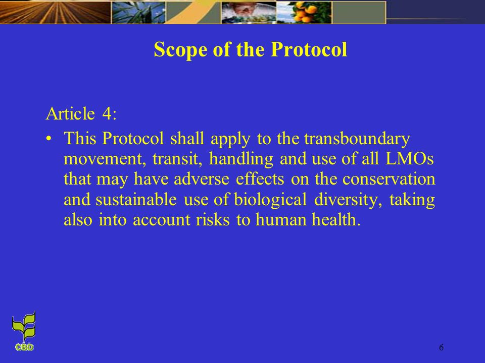 Scope of the Protocol Article 4: