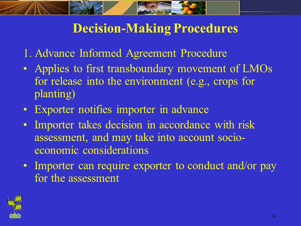 Decision-Making Procedures