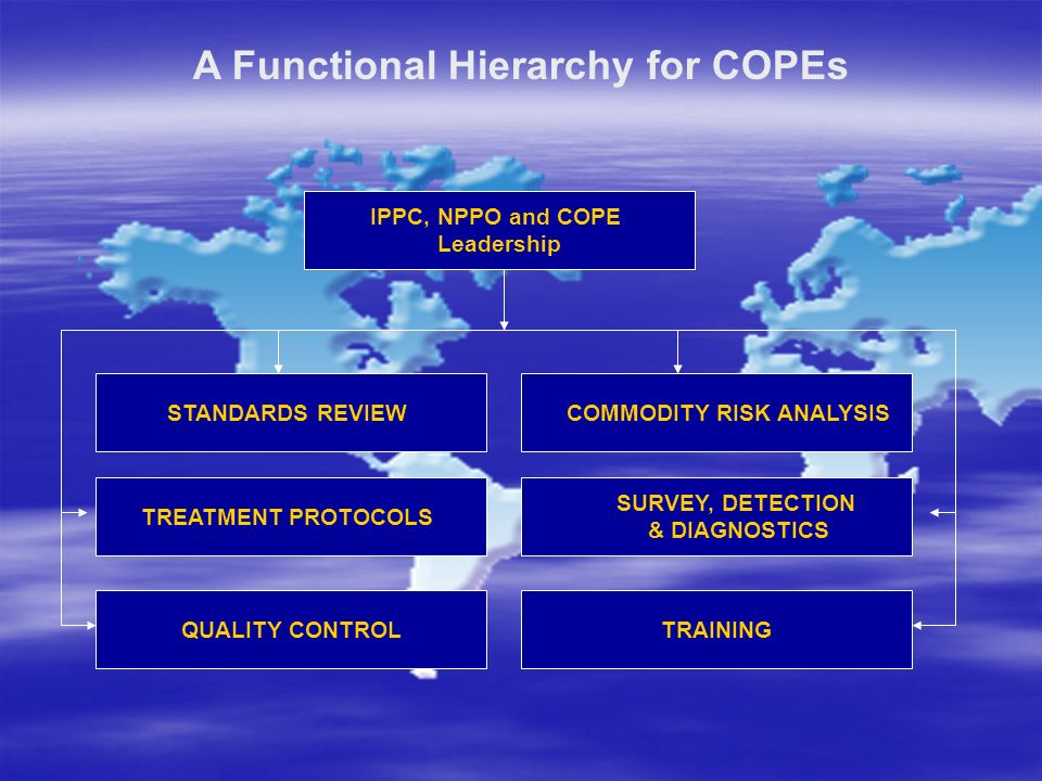 A Functional Hierarchy for COPEs