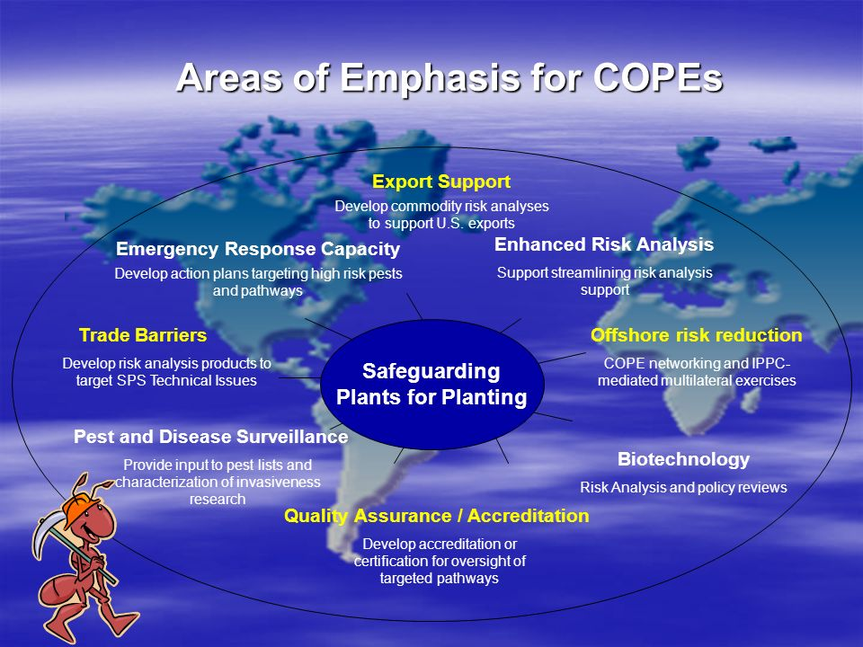 Areas of Emphasis for COPEs
