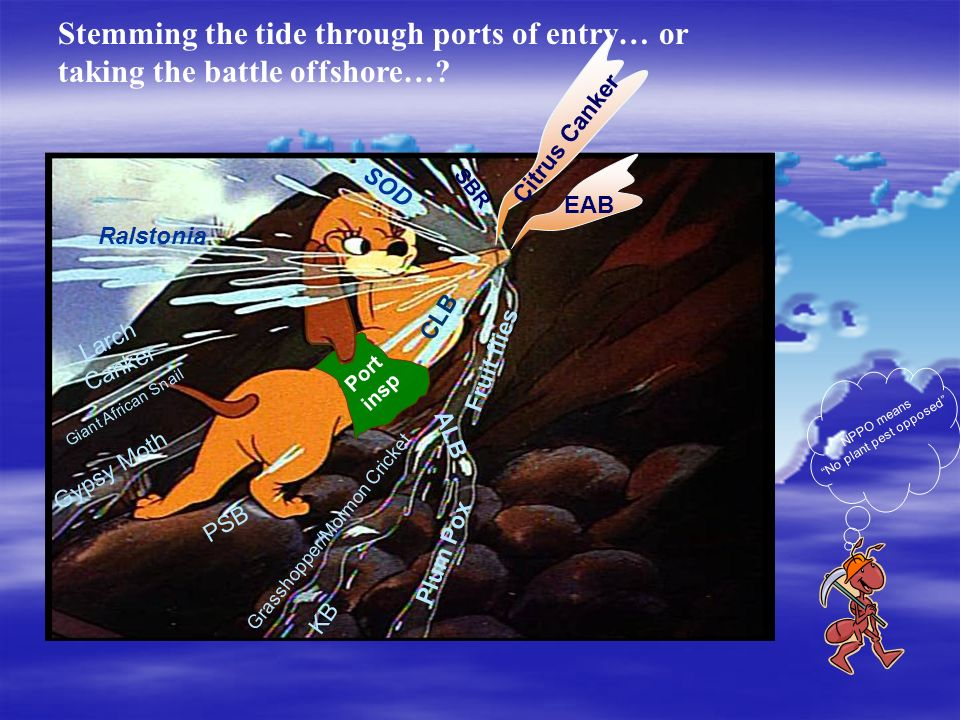 Stemming the tide through ports of entry… or taking the battle offshore…