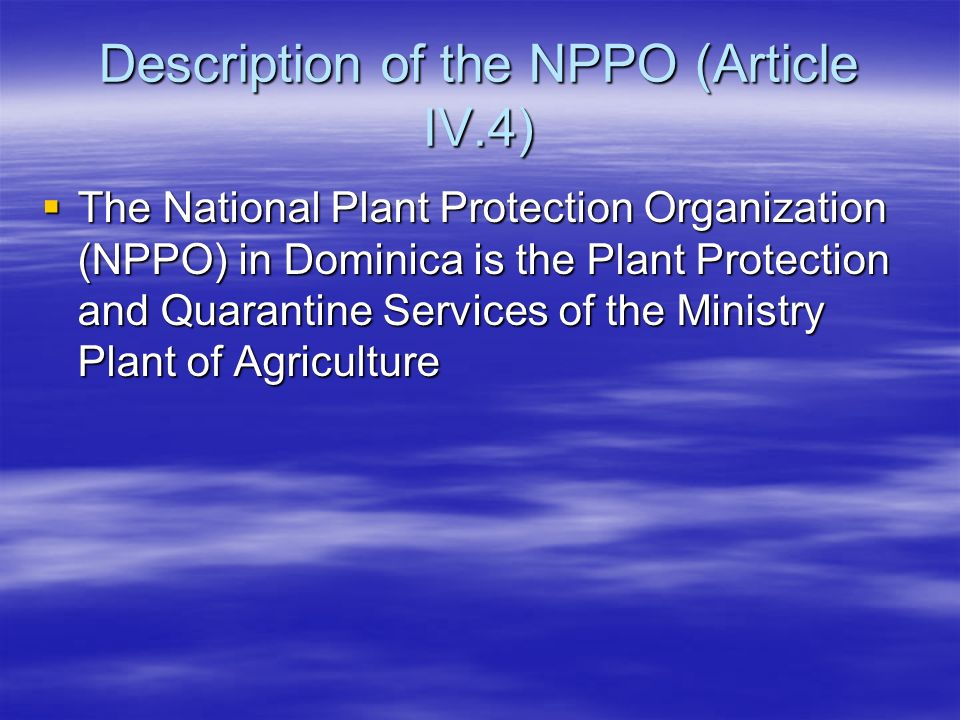 Description of the NPPO (Article IV.4)