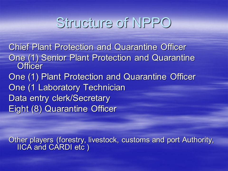 Structure of NPPO Chief Plant Protection and Quarantine Officer