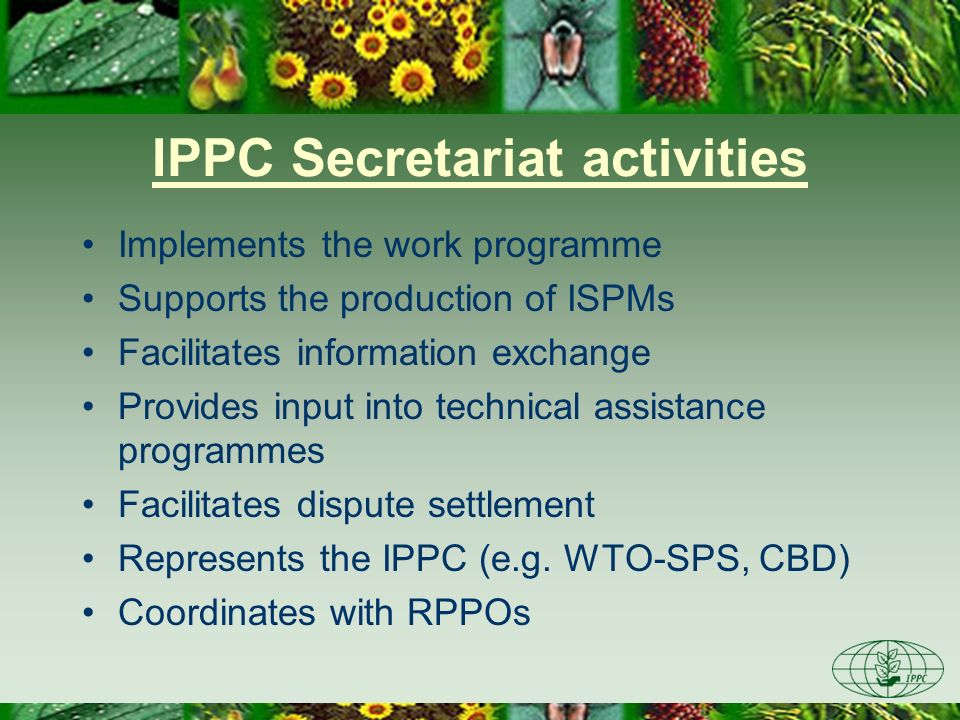 IPPC Secretariat activities