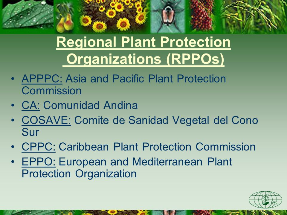 Regional Plant Protection Organizations (RPPOs)