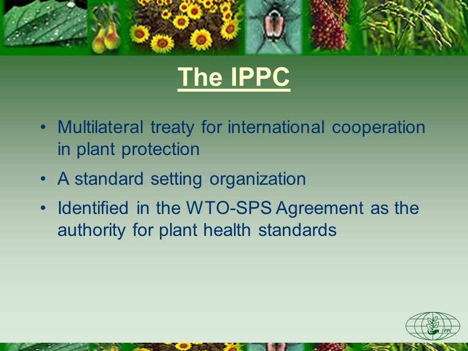 The IPPC Multilateral treaty for international cooperation in plant protection. A standard setting organization.