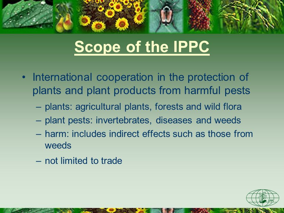 Scope of the IPPC International cooperation in the protection of plants and plant products from harmful pests.