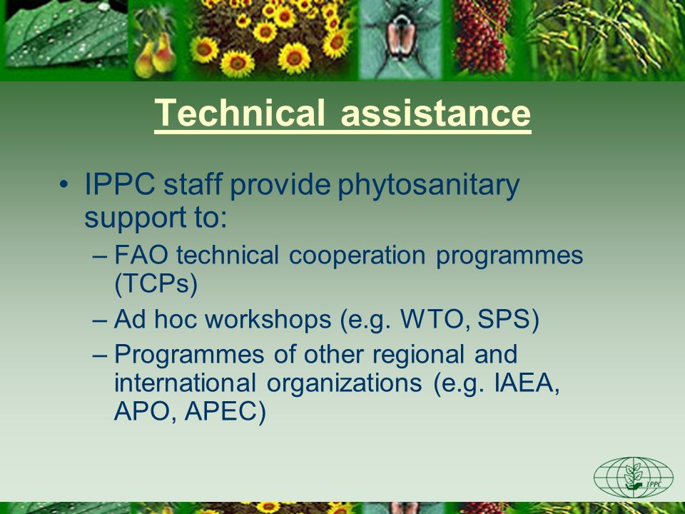 Technical assistance IPPC staff provide phytosanitary support to: