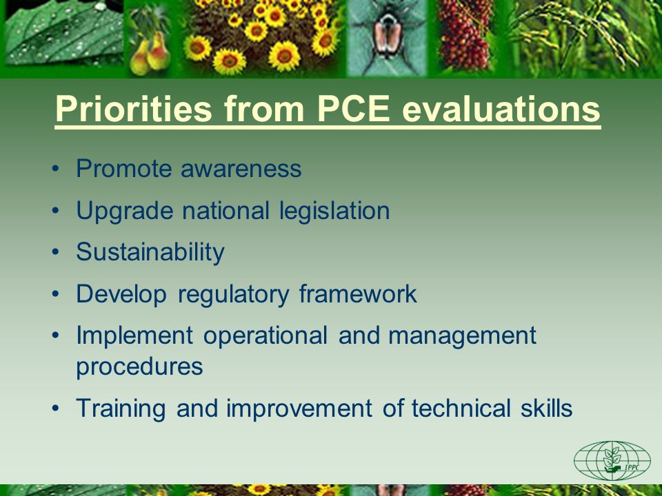 Priorities from PCE evaluations