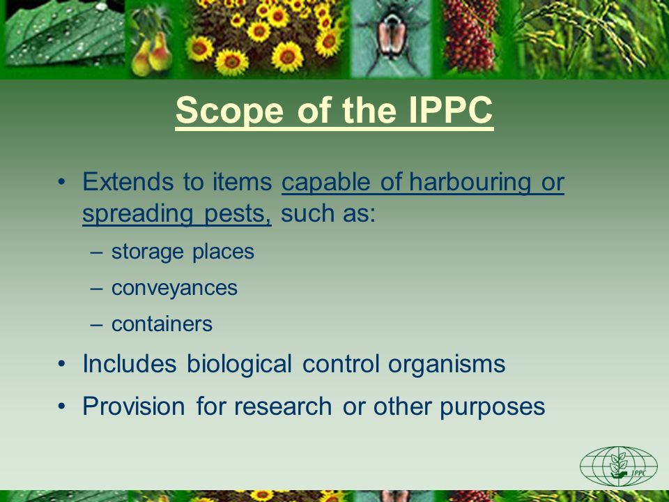 Scope of the IPPC Extends to items capable of harbouring or spreading pests, such as: storage places.