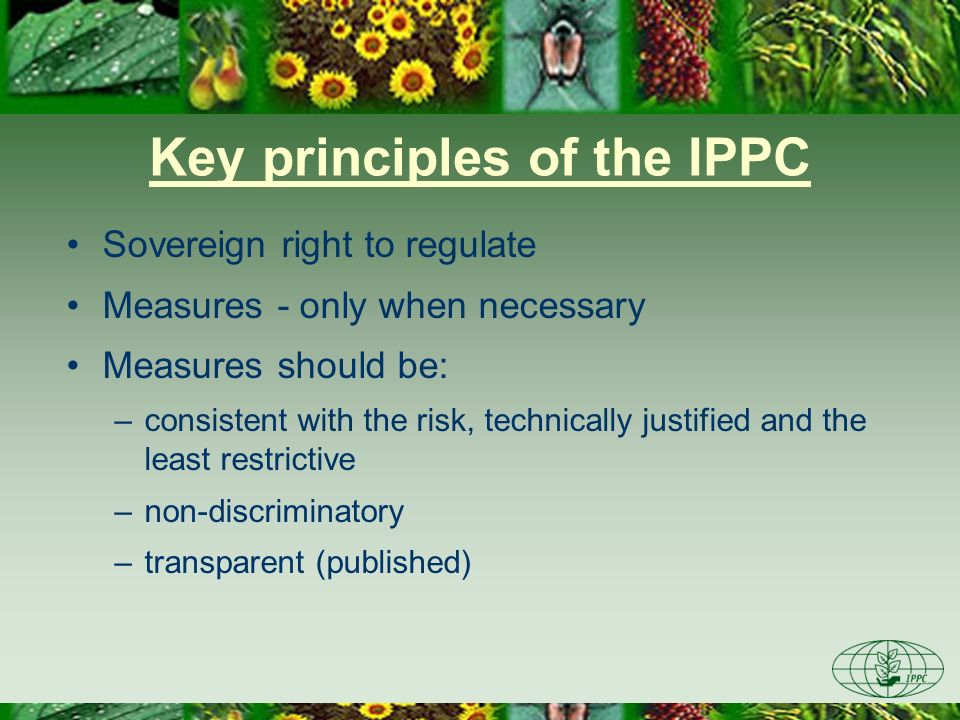 Key principles of the IPPC