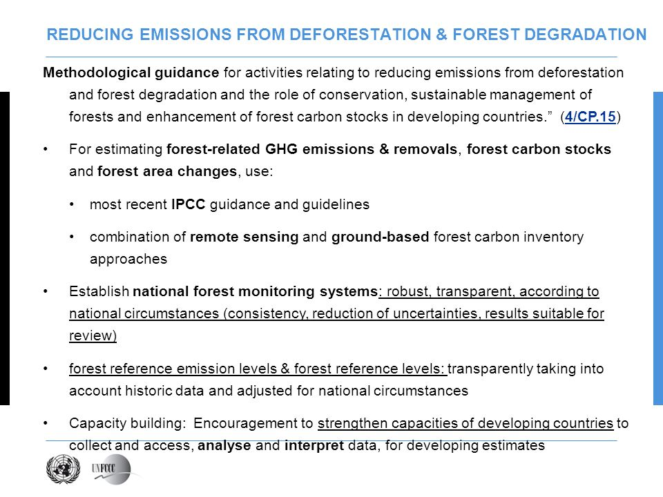 REDUCING EMISSIONS FROM DEFORESTATION & FOREST DEGRADATION