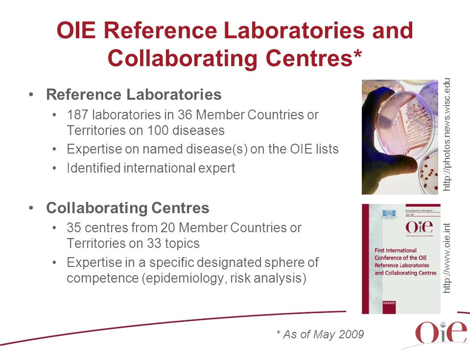 OIE Reference Laboratories and Collaborating Centres*