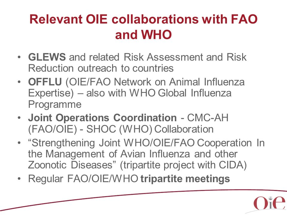 Relevant OIE collaborations with FAO and WHO