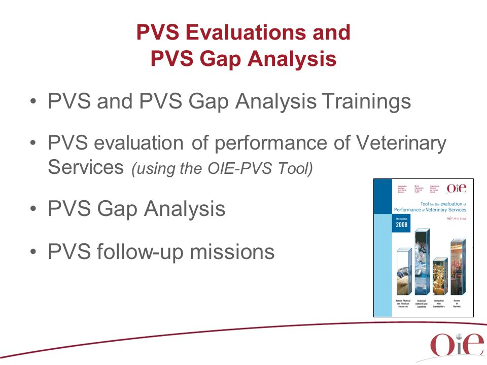 PVS Evaluations and PVS Gap Analysis