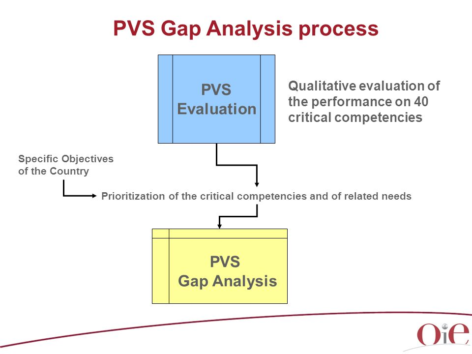 PVS Gap Analysis process