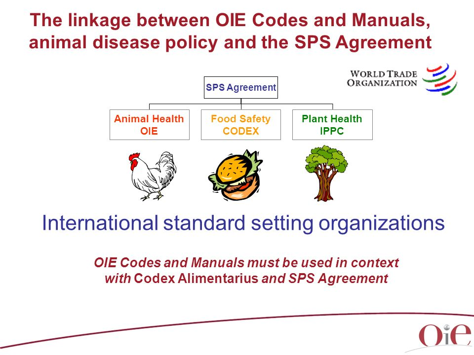 OIE Codes and Manuals must be used in context