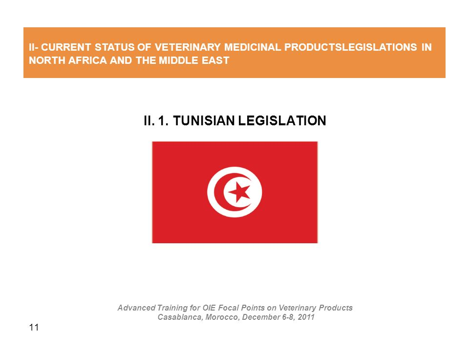 II. 1. TUNISIAN LEGISLATION