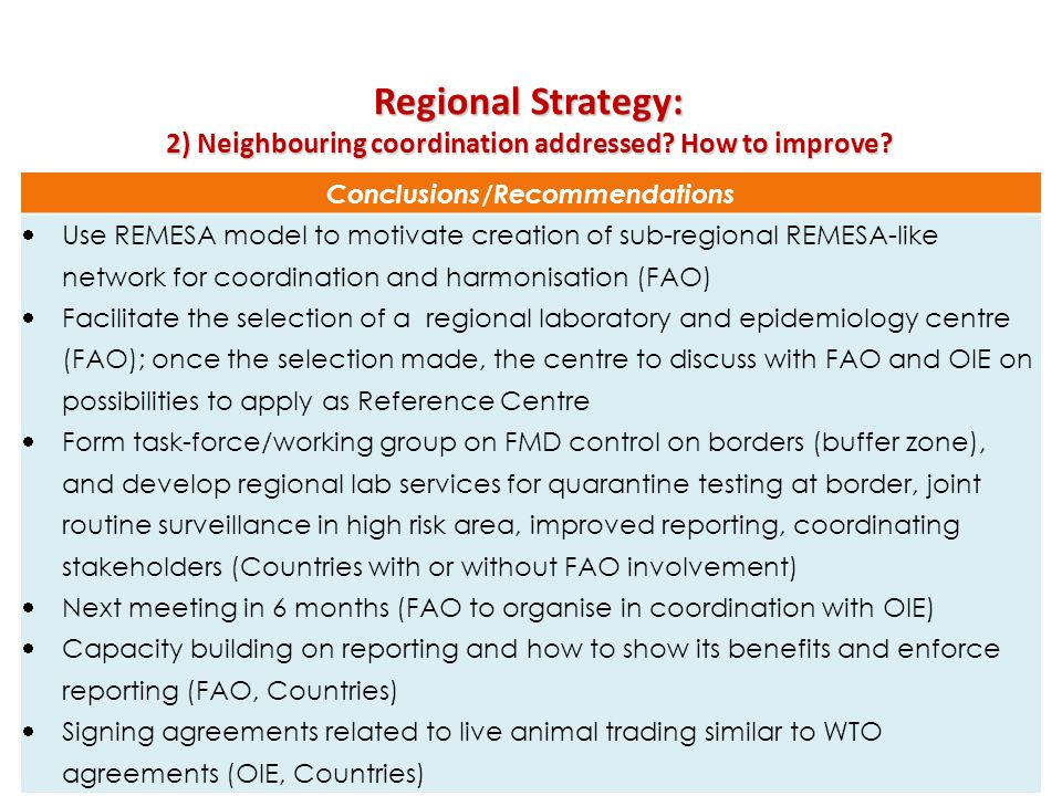 Regional Strategy: 2) Neighbouring coordination addressed How to improve Conclusions/Recommendations.